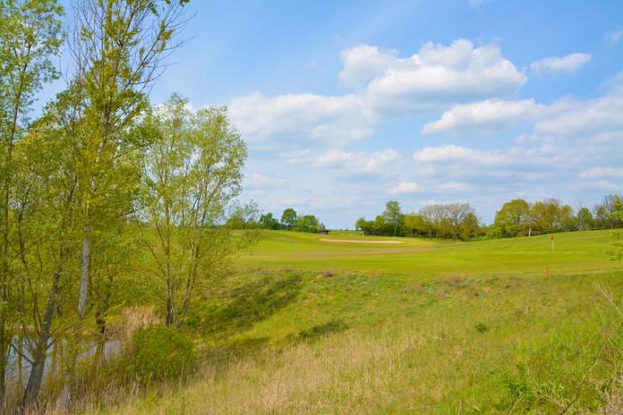 Green in Wilkendorf