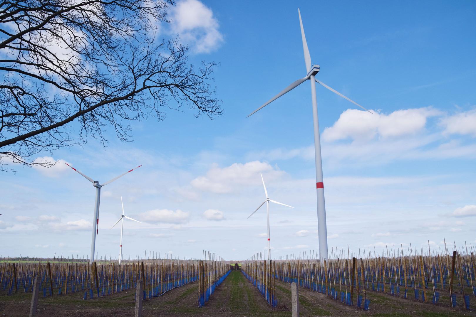 Windkarft & Obstbau