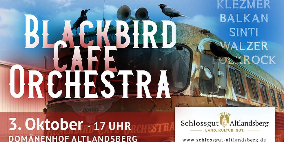 Blackbird Café Orchestra