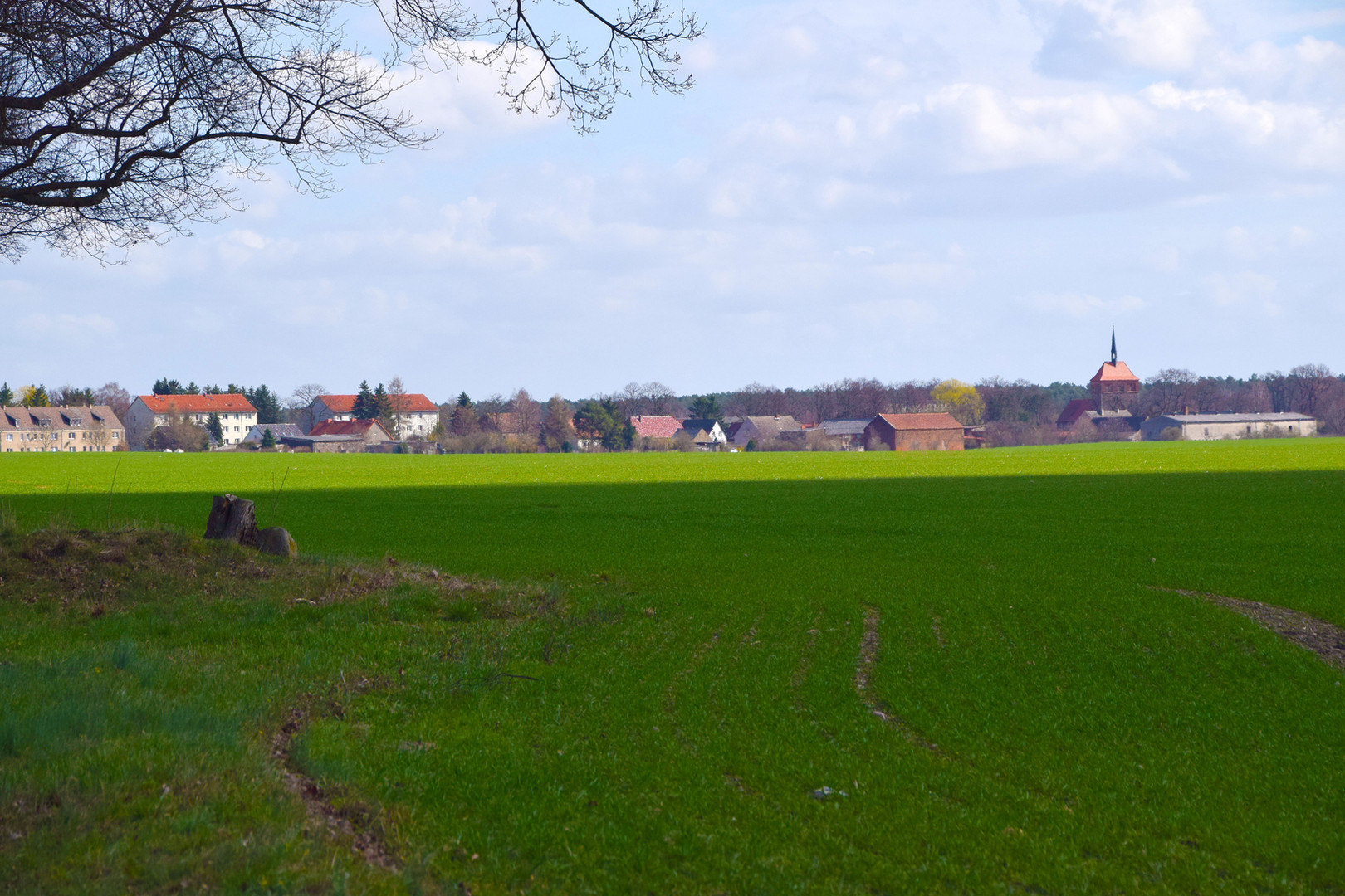 Wesendahl-Silhouette.JPG