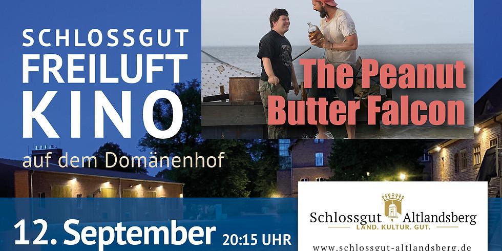 Schlossgut-Freiluftkino: The Peanut Butter Falcon