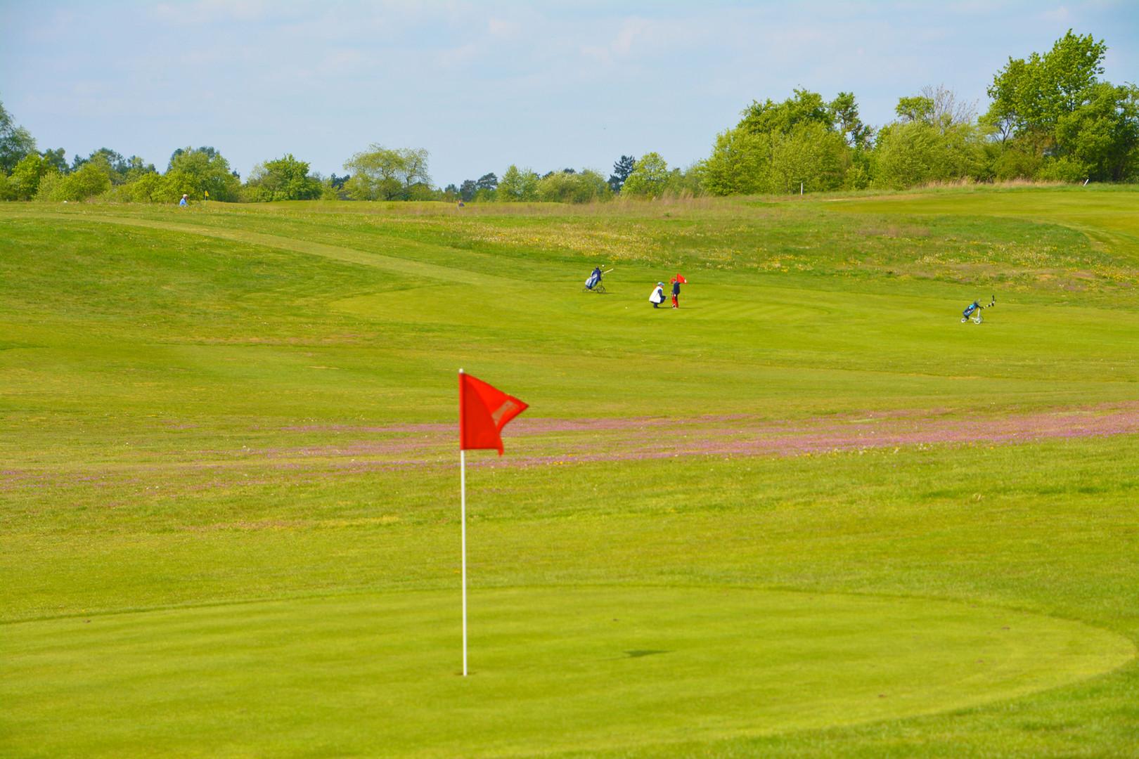 Golf in Wilkendorf