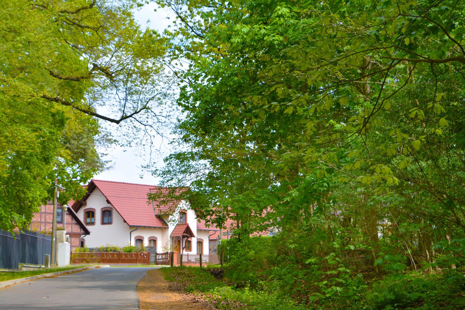Blick zum Dorfanger Wilkendorf