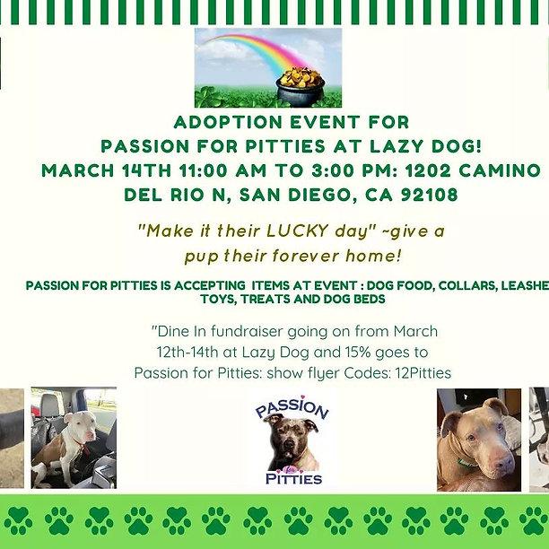 Adoption Event - Lazy Dog.jpeg