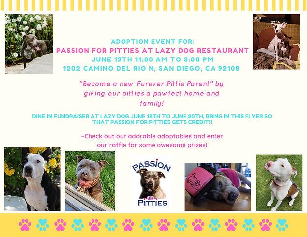 Adoption Event - Lazy Dog