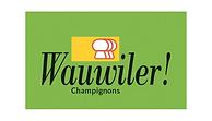 wauwiler Logo.png