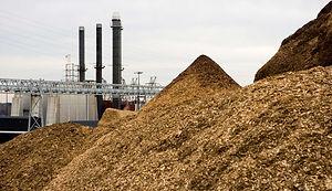 biomassplant.jpg