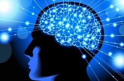 Brain Power Workshop in NYC