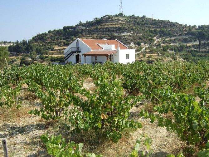 Monolithos Wine Dimensions: July 2017