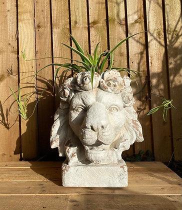Regal Lion Head Planter