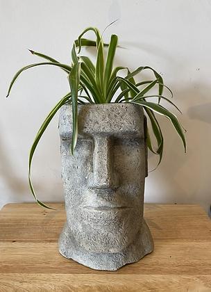 Easter island head pot planter