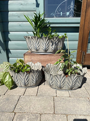 Set Of 3 Scallop Edged  Foliate Trough Planter