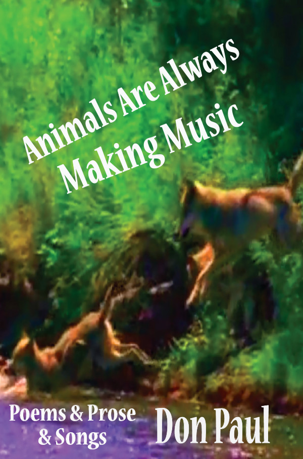Animals Are Always Making Music FRONT CVR.jpg