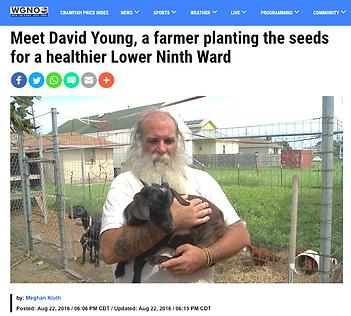 David Young, WGNO.png