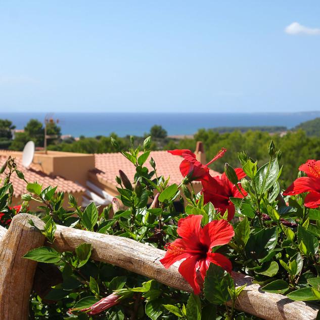 Villas_Menorca_Sur_Special_5.jpg