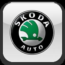 Замена передних дисков Skoda Спб