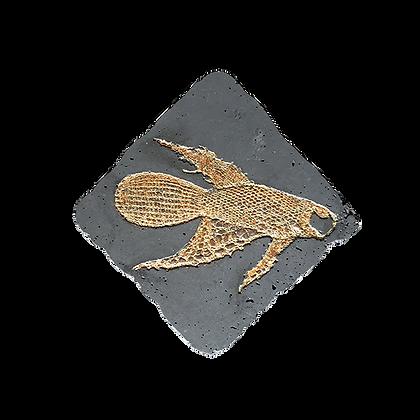 Fossile béton avec empreinte poisson en dentelle jaune