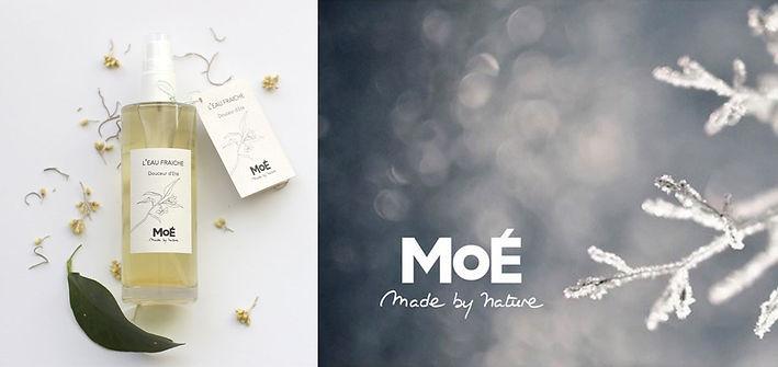 MOE-2.jpg