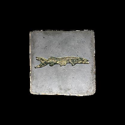 Fossile carré avec empreinte dentelle verte