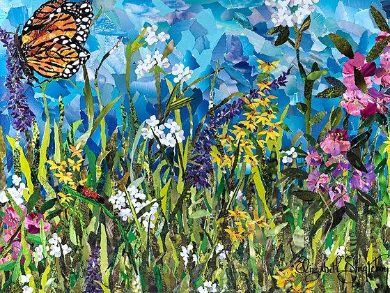 Wildflowers Of Beech Mountain, North Carolina