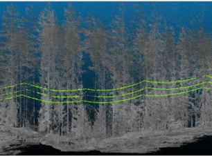 powerline laserscan  LIDAR