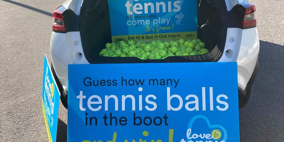 Guess how many balls