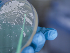Meet the Scientists of the Future Bioeconomy part 1: Using microbes to create new bioplastics