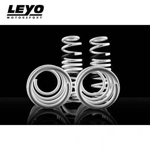 LEYO Motorsport - MK7/7.5 R Lowering Springs