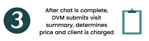 chat, complete, dvm, summary, charges, client, telemedicine, veterinarian, clipboard virtuwoof telemedicine veterinary virtual care telehealth teletriage dog cat startup minnesota woman owned healthcare vet zipnosis anipanion teletails televet medici zoom business petriage mvma airvet vet tech coronavirus covid-19