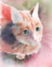Whiskers on Kittens lrGuarino.jpg