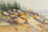 Surowicz 2.jpg
