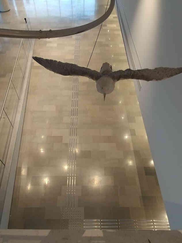מוזיאון אוצרות הטבע אוניברסיטת תל אביב
