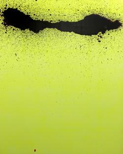 evolution_pp_ acrylic on canvas _ 16