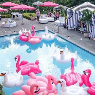 L'Art des Co - Pool Party