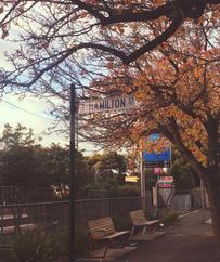Hamilton Street