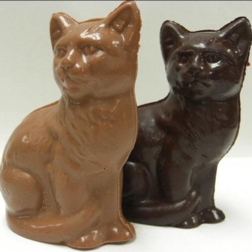Chocolate Cats