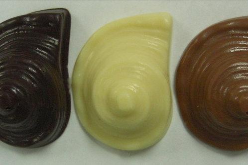 Escargot Shell