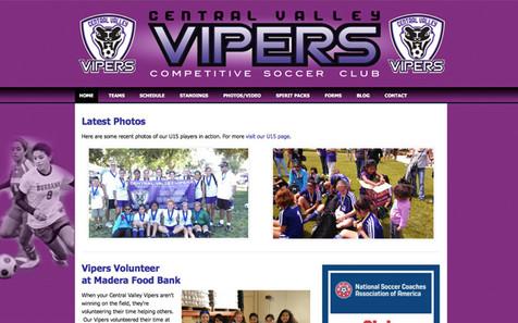 07 screen_vipers_600.jpg