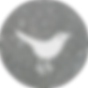 twitter silver round social media icon .