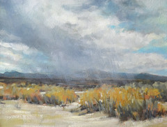 Rain Shower Over New Mexico