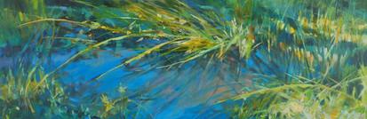 Wetlands Muse