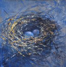Nest: Commission
