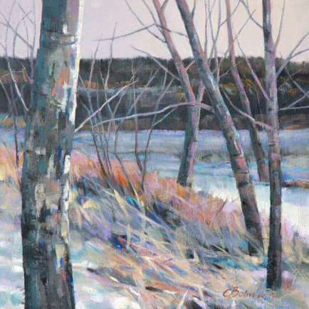 Winter on the Bow River