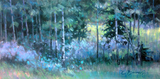 Willows and Pine