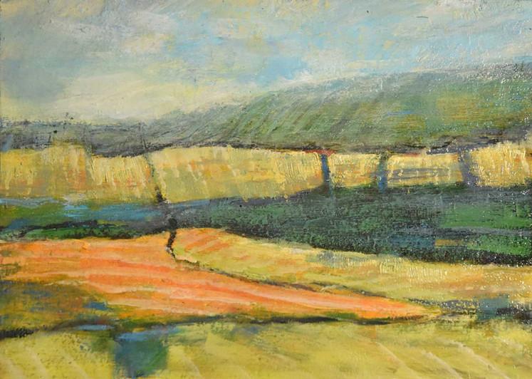 Foothills Fields