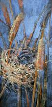 Nest in Bullrushes