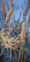 Nest in Bullrushes