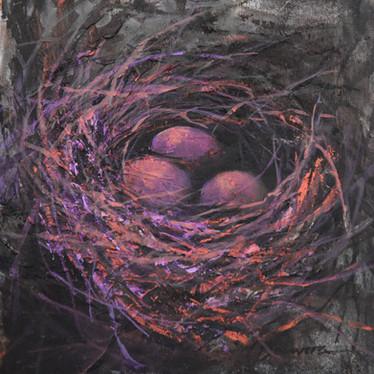 Nest: For Safekeeping