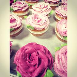 Rose Cupcake.jpg