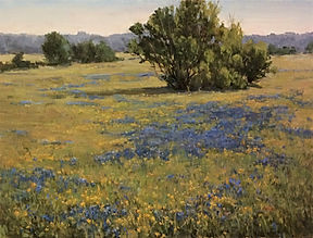 Spring Pasture 1.jpg